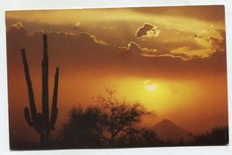 USA - AK 350204 Arizona - Tortilla Flat - Etats-Unis