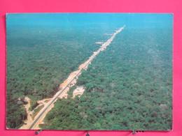 Visuel Très Peu Courant - Brésil - Regiao Amazonica - Rodovia Transamazonica - Jolis Timbres - Scans Recto-verso - Brazil