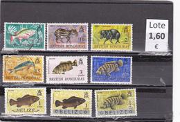 Belice  -   Lote  9  Sellos Diferentes  - 5/3005 - Belice (1973-...)