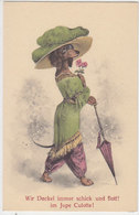 Wir Dackel Immer Schick & Flott Im Jupe Culotte       (190524) - Cani