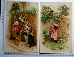2 CHROMOS    LITHOGRAPHIES  GRAND FORMAT  H  17 Cm....SCÈNES DE CAMPAGNE...ECHELLE...JARDINAGE - Vieux Papiers