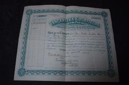 Certificat De 100 Parts Tanganyika Goldfields Limited 1928 - Mines