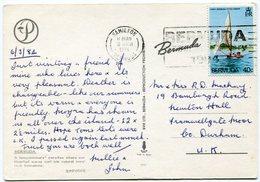 Bermuda - Postcard - Carte Postale - Bermuda