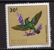 Souimanga à Collier (Oiseau) - Rwanda - 1973 - Rwanda