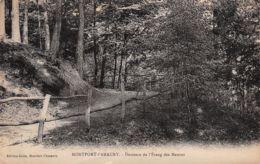 78-MONTFORT L AMAURY-N°1149-C/0295 - Montfort L'Amaury