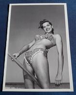 Sexy Pin-Up Girl PhotoPostCard > Model NANCY WHITE Photo ERIC KROLL > Taschen-Foto-AK Von 1995 (puc24) - Pin-Ups
