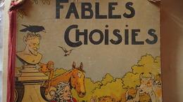 Recueil De Fables Choisies - French Authors