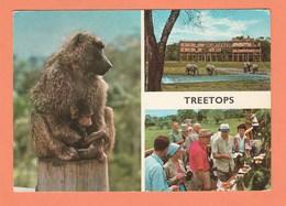 KENYA TREETOPS - TIMBRES N° 38 / 55 - Kenya