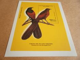 Miniature Sheets 1987 Birds Perf - Madagascar (1960-...)