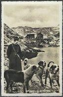 """Schweiz Suisse 1938: """"Chiens Au St.Bernard"""" Avec O GRAND ST.BERNARD 20.VII.38 Pour Dieppe (France) - Chiens"""