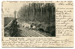 CPA - Carte Postale - Belgique - Chemin Creux à La Morette Près De Assche - 1900 (B8748) - Asse