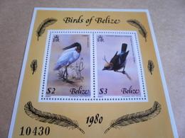Miniature Sheet Belize Birds 1980 - Belize (1973-...)