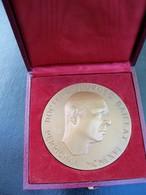 Ancienne Médaille Bronze  Signée MIGUEL PAREDES. DR Georges Baillat Perpignan 1966 - France