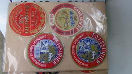 Grosse Collection De Couvercles Et étiquettes (173 Dans Ce Classeur) De Fromages Français.6/10 Voir Commentaires !!! - Cheese
