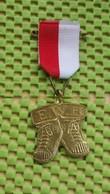 Medaille / Medal -  Enschedse Wandel Bond - Enschedé Walking Association -  The Netherlands - Netherland