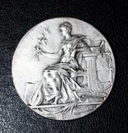 """Belle Médaille Bronze Argenté """"Association Des Auteurs Compositeurs - Bordeaux Et Sud-Ouest"""" - Professionnels / De Société"""