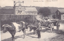 Environs De Spa Attelage Ardennais - Spa