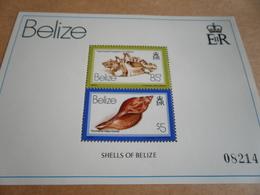 2 X Miniature Sheets Belize Shells Of Belize 1980 - Belize (1973-...)