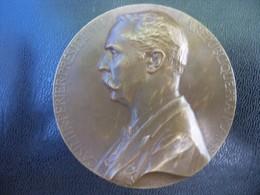 Ancienne Médaille Bronze  Signée CHAPLAIN 1894. Président De La République CASIMIR PERIER. - Francia