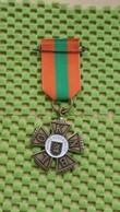 Medaille / Medal - Avondvierdaagse Nijmegen ( 5 ) -  Evening Four-day Walk Nijmegen  (5) -  The Netherlands - Netherland