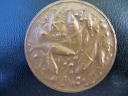 Ancienne Médaille Bronze Concours De Péche. - Andere