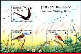Ref. JE-V2011-3SS JERSEY 2011 BIRDS, SUMMER VISITING BIRDS, SOUVENIR SHEET MINT MNH 3V - Songbirds & Tree Dwellers