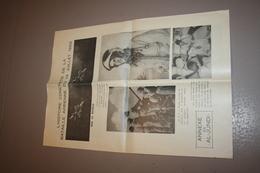 Annexe De Al Jundi Sur La Bataille Aerienne De 1966 - Newspapers