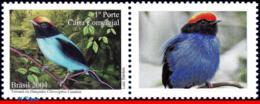 Ref. BR-2941-2 BRAZIL 2004 ANIMALS, FAUNA, DANCER BIRDS,, PERSONALIZED MNH 1V Sc# 2941 - Passereaux