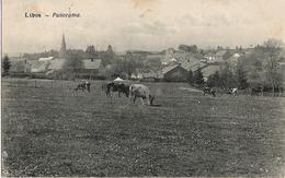 Libin - Panorama - Circulé 1920 - Edit. A. Duchêne, Libin - Libin