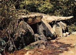 ERNEE Dolmen De La Contrie 8(scan Recto-verso) MA1700 - Ernee