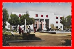 CPSM/pf  OUJDA (Maroc)  La Poste, Animé, Traction...S1520 - Maroc