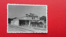 Istra:Rovinj.Zeleznisko Letovisce.Railway - Croatie