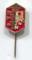 KROSNO  Poland - Blazon, Coat Of Arms, Vintage  Pin, Badge, Abzeichen - Cities