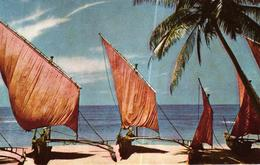 CEYLON - SRI LANKA - FISHING BOATS - Sri Lanka (Ceylon)