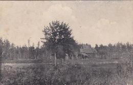 Ansichtskarte Einer Kapelle Im  Wald Bei Gnessitschi Hnesitschy Gniesicze - Weißrussland