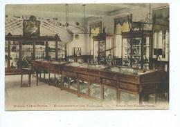 Sint Katelijne Waver Wavre-Notre-Dame - Etablissement Des Ursulines - Salle Des Collections - Sint-Katelijne-Waver