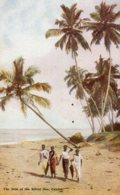 SRI-LANKA (Ceylon) - The Side Of The Silver Sea - VG Ethnic - Sri Lanka (Ceylon)