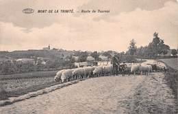 Mont De La Trinité - Route De Tournai - Tournai