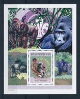 Congo Ex Zaire 2005, Scout, Gorilla, BF - Pfadfinder-Bewegung