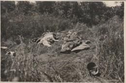 ***   Sezione Fotocinematografica  R Esercito Italiano -Reproduczione Vietata 14 / 18  - Militaria - Fotografia