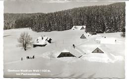 3074m: AK 3214 Puchenstuben, Gasthaus Wastl Am Wald, Ca. 1950 - Scheibbs