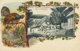 Sirnitz - Gasthaus Z. Auerhanh - Schwarzw.  [4A-1.046 - Deutschland