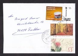 Germany: Cover, 2011, 2 Stamps & Personalized Stamp, Portocard Individuell, Advertisment Caparol (minor Damage) - [7] West-Duitsland