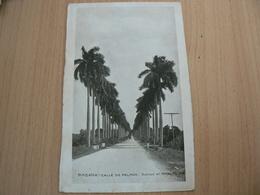 CP19/ CUBA HABANA  CALLE DE PALMAS  / VOYAGEE / 2 SCANS - Cartoline