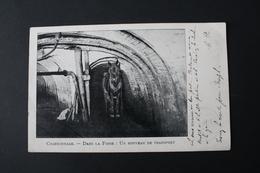 Charbonnage - Dans La Fosse : Un Bouveau De Transport, Cachet Postal D'Enghien 1903 - Mines