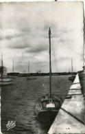 Cp A Saisir 14 Courseulles Le Bassin Port Pont En Arriere Plan 1950 Edition Elde Rue Gambetta Luc Sur Mer - Courseulles-sur-Mer