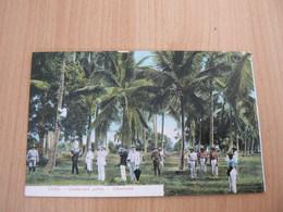CP20/ CUBA COCOTEROS / CARTE VOYAGEE - Cartoline