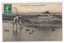 Noyelles-sur-Mer-Une Hutte En Baie De Somme,- Ed. Hôtel Des Voyageurs - Noyelles-sur-Mer