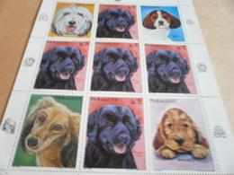 Sheetlet Paraguay 1986 Dogs - Paraguay