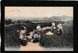 Japan-Lunch Hour At Tea Garden 1915- Antique Postcard - Japon